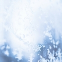 Pool Chemicals Used to Winterize